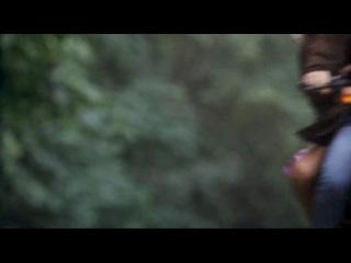 Птичка на проводе / Bird on a Wire (1990 год)В ролях: Мэл Гибсон, Голди Хоун, Дэвид Кэрредин, Билл Дьюк, Стивен Тоболовски, Джоа