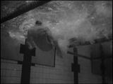 Спортивное плавание. Техника спортивного плавания. Кроль на спине.